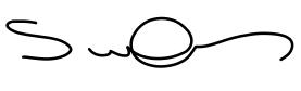 Shane Signature